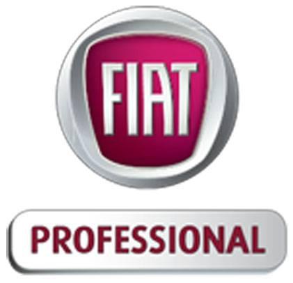 Tragwein Fiat Professional